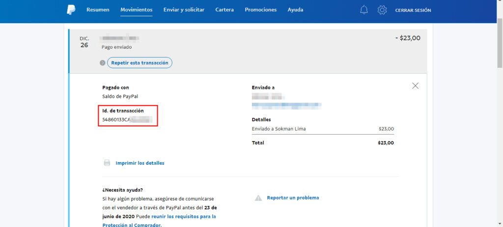 Detalles de pago PayPal