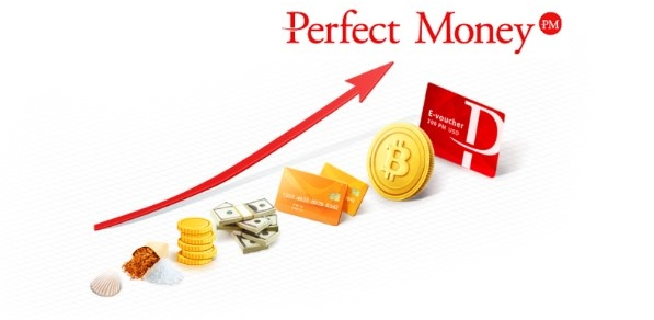 Perfect Money, la evolución del dinero